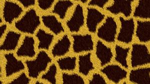 Skin Texture 3000x2000 Wallpaper