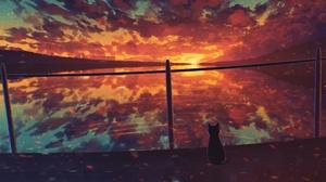 Cat Water Sunset 2660x1496 Wallpaper