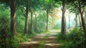 Path Tree 2667x1500 Wallpaper