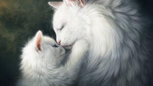 Cat Hug Kitten Love 2000x1523 Wallpaper