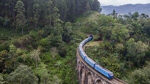 Nature Forest Trees Railway Train Bridge 2560x1439 wallpaper