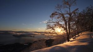 Cloud Nature Snow Sunrise Tree Winter 1920x1279 Wallpaper