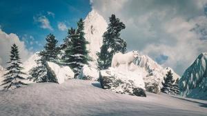 Cloud Mountain Sky Snow Spruce Winter Wolf 3840x2160 Wallpaper