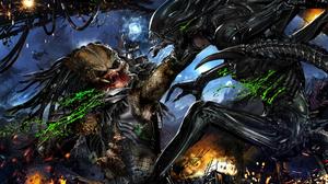 Alien Vs Predator Predator Xenomorph 2400x1350 Wallpaper