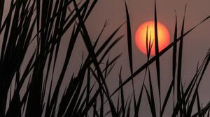 Silhouette Sunset 6720x4480 Wallpaper