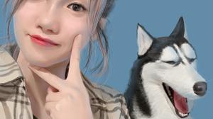 Women Simple Background Portrait Asian Siberian Husky 4320x5800 wallpaper