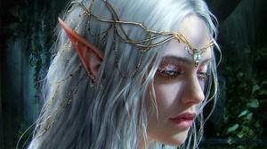 Elves Women Pointed Ears White Hair Crown Blue Eyes Sadness Fantasy Art Fantasy Girl Artwork 1920x1080 Wallpaper