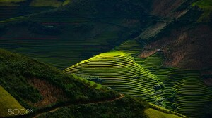 Rice Paddy Landscape Valley Rice Fields Rice Terrace 2048x1365 Wallpaper