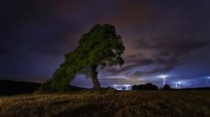 Field Lightning Nature Night Tree 2500x1674 Wallpaper