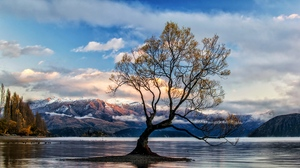 Cloud Fall Lake Wanaka Landscape Mountain New Zealand Sky Tree 5890x3343 wallpaper