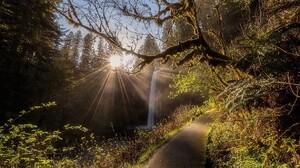 Nature Landscape Forest Waterfall Path Sun Rays Shrubs Trees Oregon 1230x768 Wallpaper