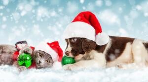 Christmas Cat Dog Kitten Puppy Santa Hat Christmas Ornaments Snow Snowfall Baby Animal 6723x2489 Wallpaper