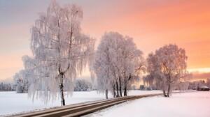 Road Sky Snow Sunset Tree Winter 2048x1365 wallpaper