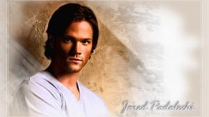 Actor American Jared Padalecki 2880x1800 wallpaper