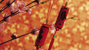 Chinese New Year Flower Decoration Colorful 1920x1200 Wallpaper