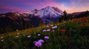 Flower Meadow Mountain 3840x2160 Wallpaper