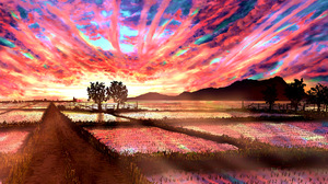 Sunset Sky Cloud Paddy Field 3167x2239 Wallpaper