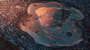 Frost Ice Puddle 3840x2160 Wallpaper