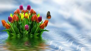 Colors Flower Sky Water 4000x3000 Wallpaper