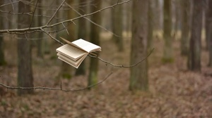 Book Depth Of Field 2560x1692 Wallpaper