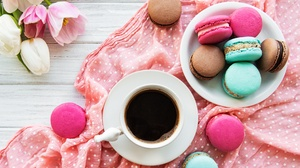 Cup Macaron Sweets Still Life 4277x3309 wallpaper
